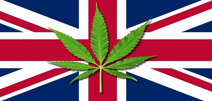 UK Halts CBD Sales
