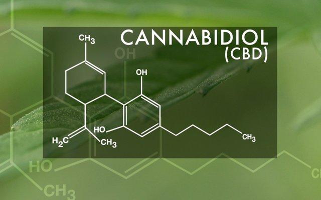 cbd-oil-for-epilepsy