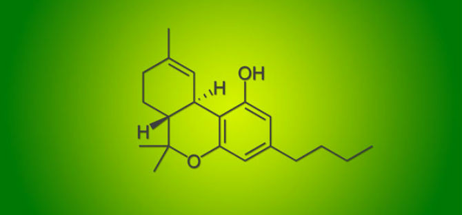 A Better Understanding of Active Cannabinoids, Such as THC