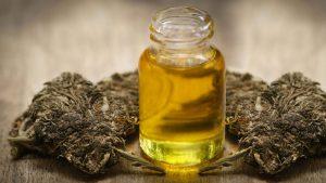 CBD, Entourage Effect, Marijuana Research, Las Vegas marijuana