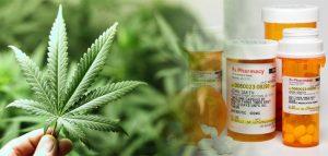 Las Vegas marijuana lab testing, Las Vegas dispensaries